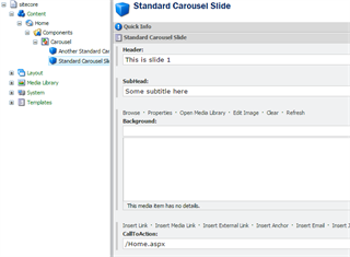 Carousel Slide Content Fields